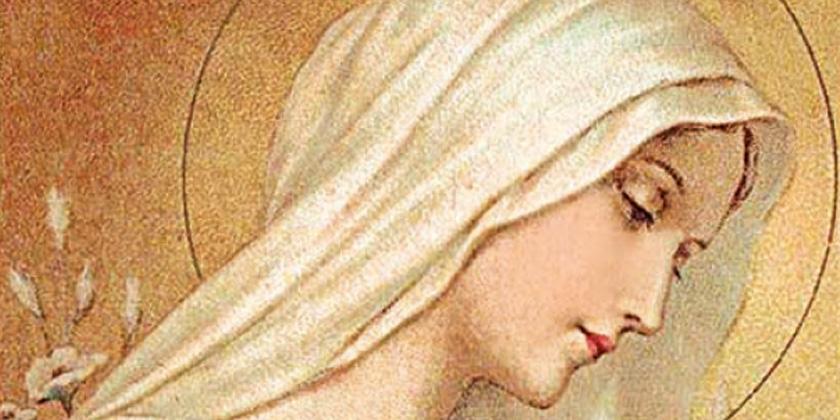 """""""Vergine Clemente"""""""