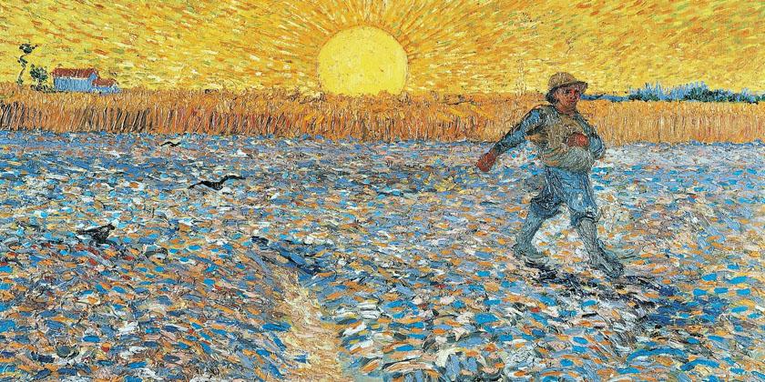 Il paradosso del chicco di grano